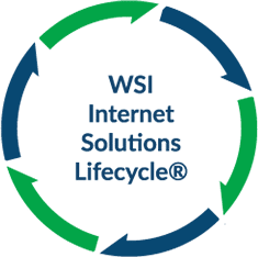 WSI-Lifecycle-Icon
